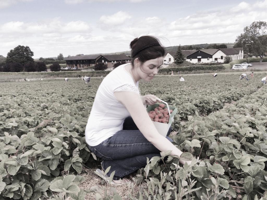 zbieram truskawki